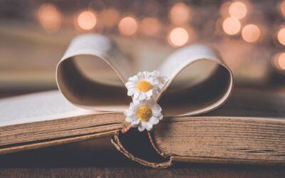 Consigli di lettura: romanzi divertenti e romantici per sognare e ridere delle piccole sfighe